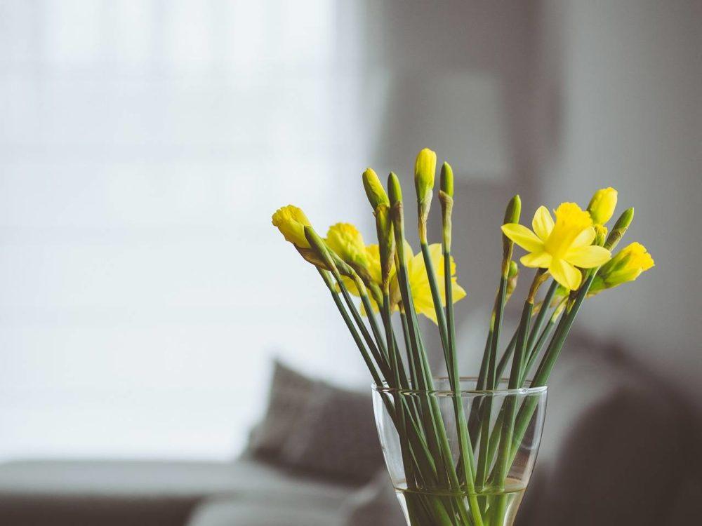 Isn't it cool? Make Dreams Happen!  #flowers #vase #interior pic.twitter.com/Xxp7McM1MC