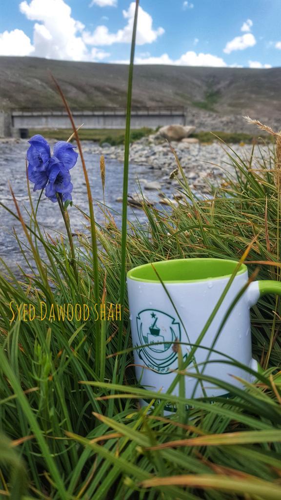 Good morning #Pakistan🇵🇰 from Kala Pani Deosai National Park #GilgitBaltistan #KalaPani #Skardu #BeautifulPakistan https://t.co/FG3T8f4MLB