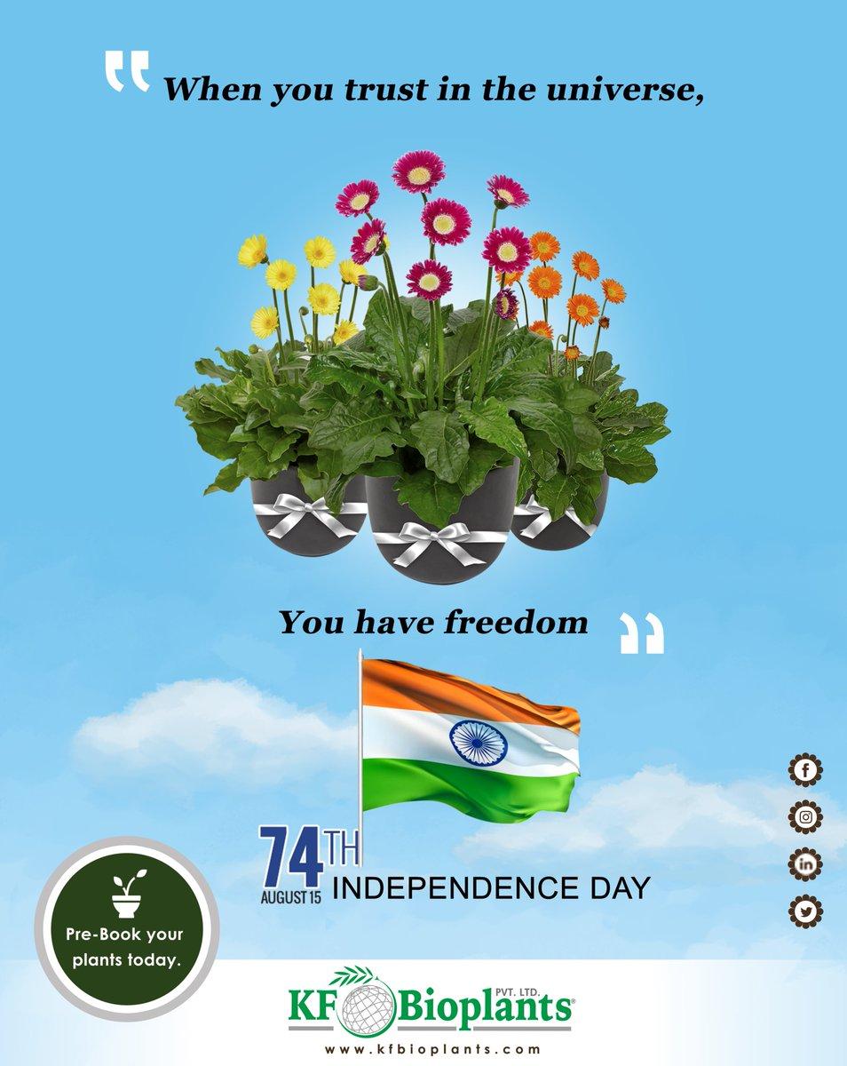 #IndependenceDay2020 #IndependenceDaySale #Flowers #floweringpots #gardening #gardeningtips #agriculture #tissueculturepic.twitter.com/38WMUL2j0v