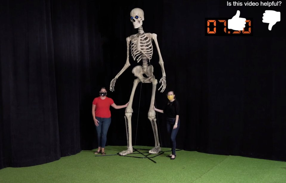 Sᴘᴏᴏᴋʏ Exᴘᴇʀɪᴍᴇɴᴛs Lᴏ On Twitter It S The Perfect Time Of Night To Discover That Home Depot Is Selling A Fucking 12 Ft Skeleton