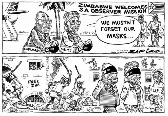 SA observer mission cartoon
