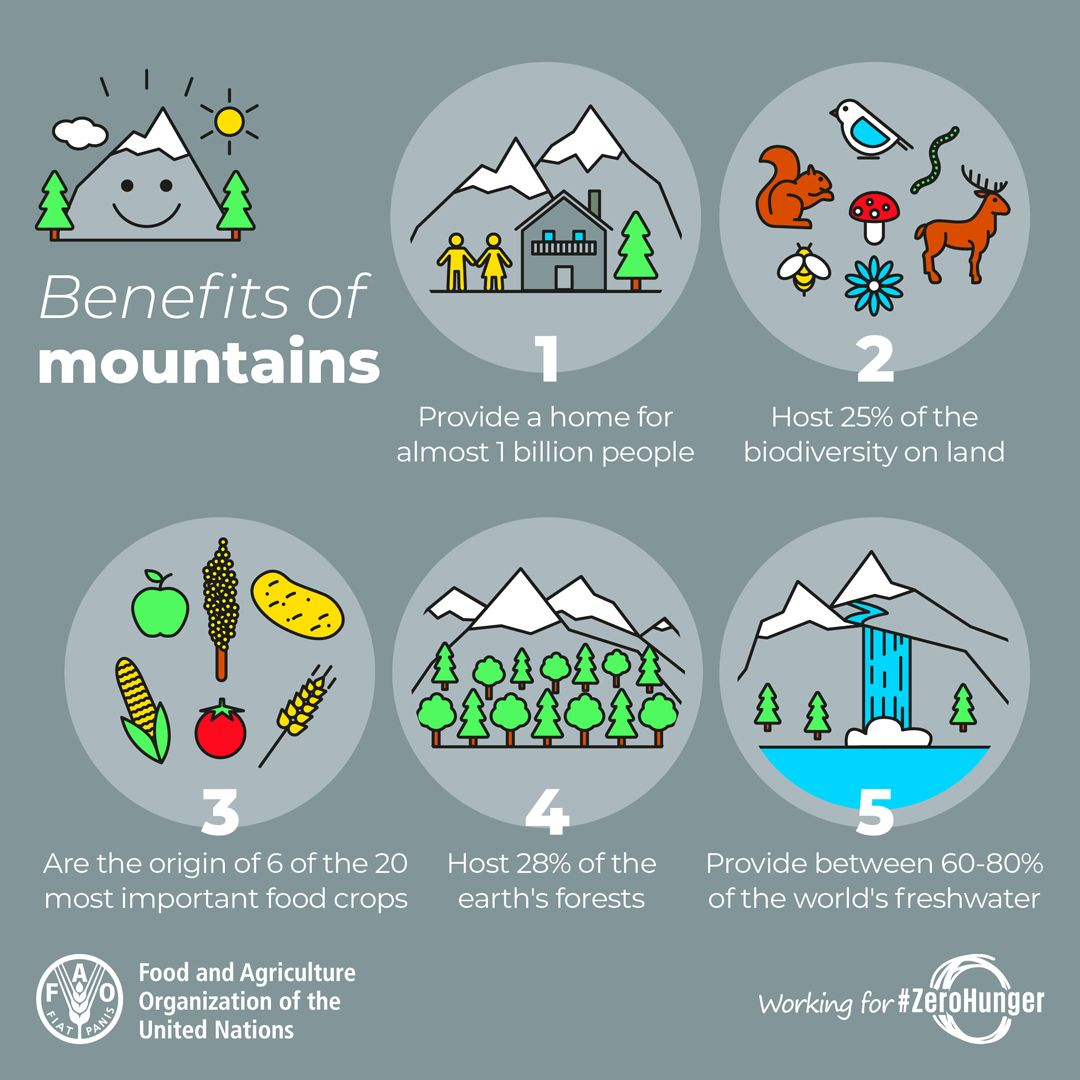#DYK mountains ⛰️ host 25% of the biodiversity on land & 28% of the planets 🌏🌍🌎 forests 🌲🌳 ? More from @FAO ⬇️ #ForNature