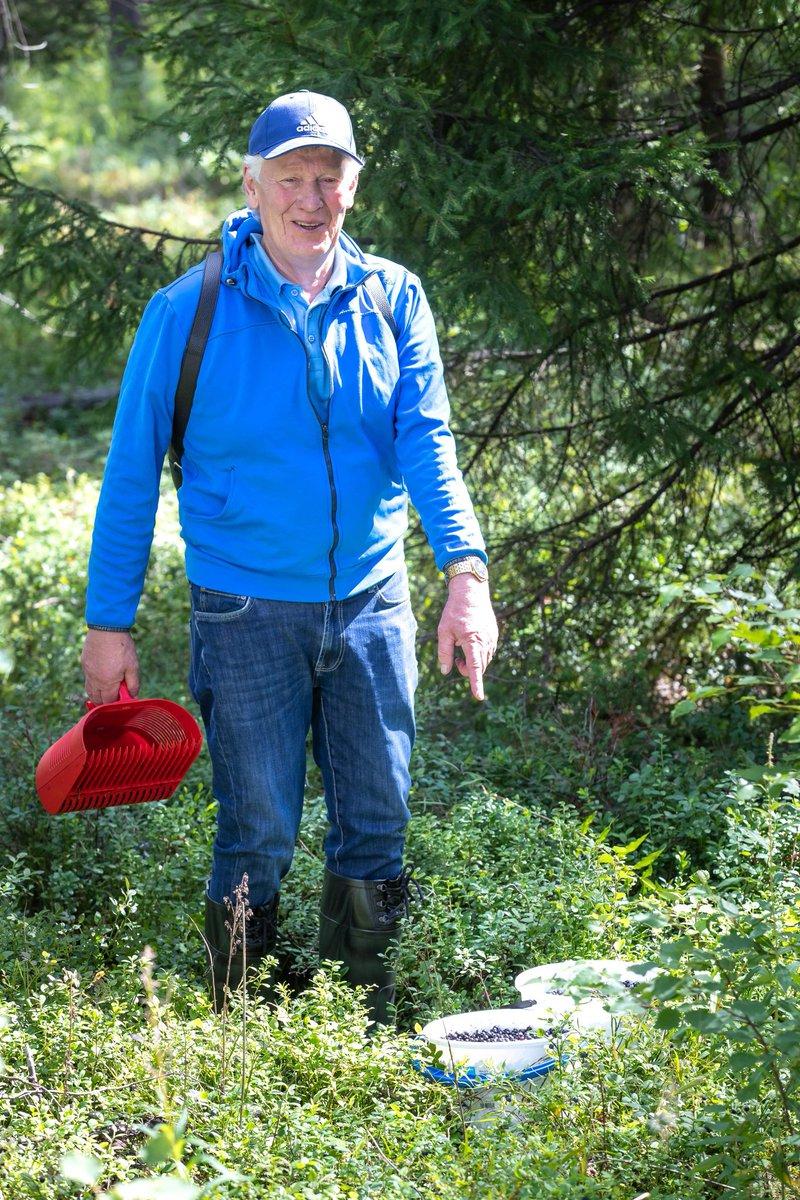"""#puolukkamannen #puolukkahaaste2020   Ihana Aimo! ❤️  """"Raahelainen hyväntekijä Aimo Karppinen on poiminut viimeisen 18 -vuoden aikana yli 1800 ämpäriä marjoja vanhuksille. Marjat hän on lahjoittanut raahelaisiin vanhusten palvelukeskuksiin."""" https://t.co/YZ0166uYDA"""