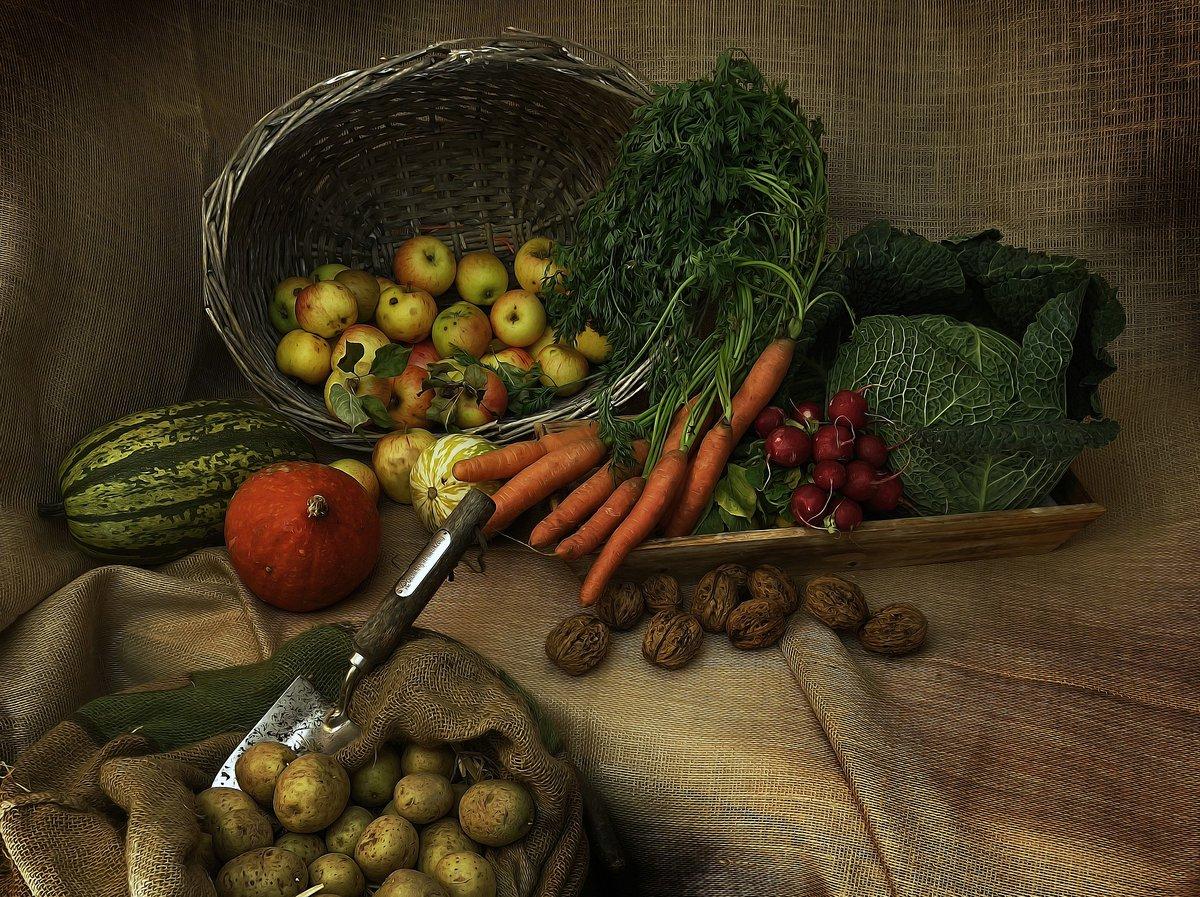 Apostar pel producte de proximitat és apostar per qualitat alimentària, #sostenibilitat mediambiental i econòmica, ja que els diners es queden al territori, es crea riquesa i oportunitats laborals. T'ho expliquem⬇️   https://t.co/phpYlO4ULI https://t.co/xuLpvEvglr