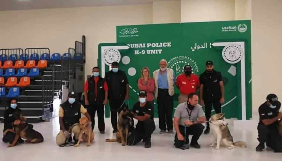Entrenan a perros para detectar COVID-19; presentan 100% de efectividad https://bit.ly/3kD5ejFpic.twitter.com/NnHb7vSKRx