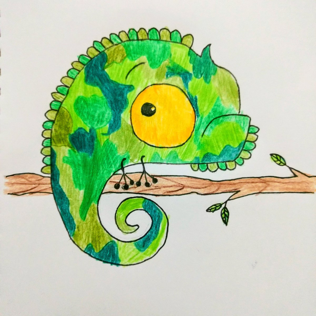 The next #DrawWithRob is here! Thanks for this adorable chameleon, @RobBiddulph ! This was by Maya 12 y.o.