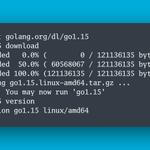 Image for the Tweet beginning: 🙌 Go 1.15 is released!  📝