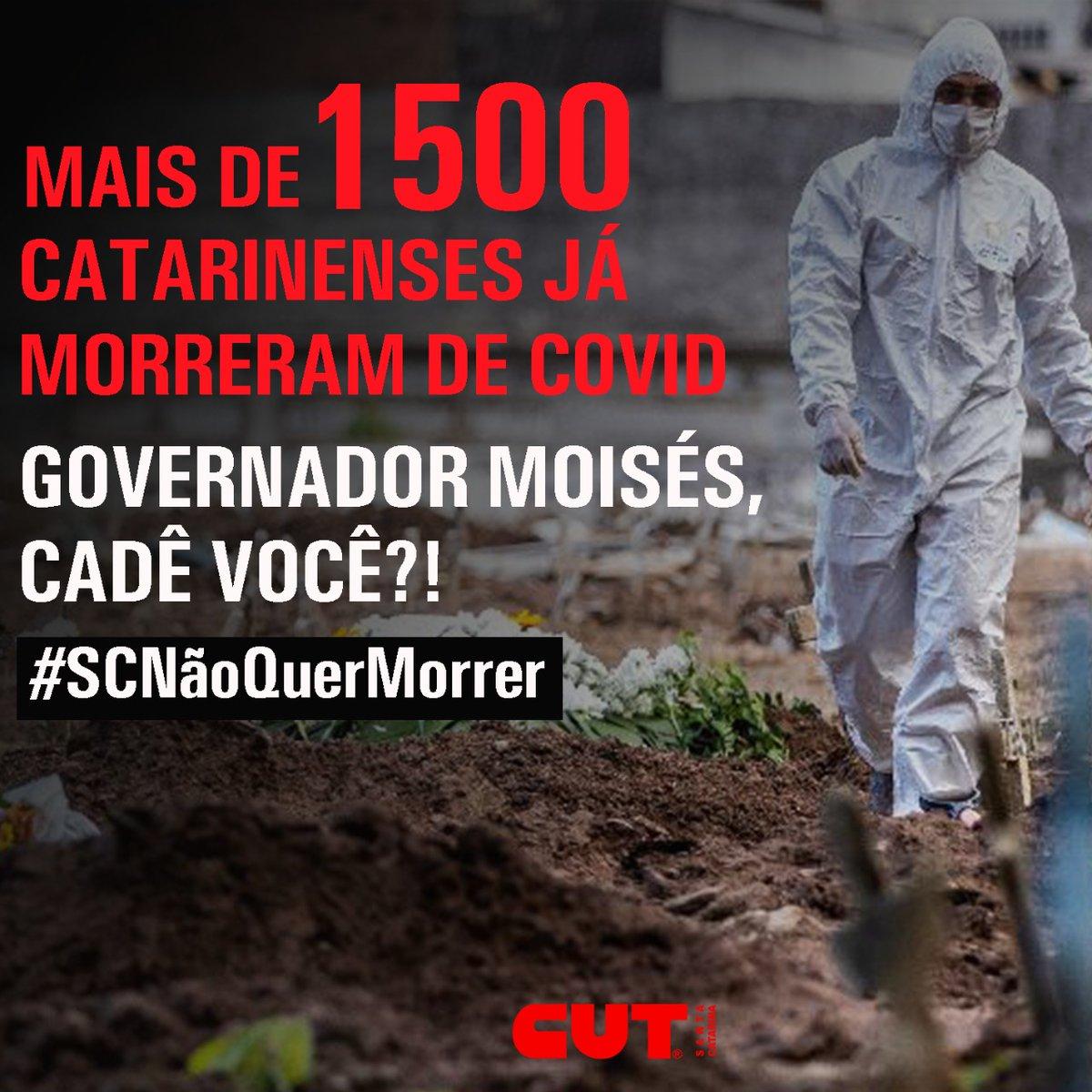 ❌ Só nesta segunda-feira (10), Santa Catarina registrou 96 novas mortes por coronavírus, o número mais alto divulgado em um único boletim desde o início da pandemia, com a ocupação na taxa de leitos de UTI acima de 80% no Estado. Enquanto isso, Moisés...  #SCNãoQuerMorrer https://t.co/V3IBRpSaUy