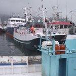 Image for the Tweet beginning: ¿Qué es la pesca sostenible?