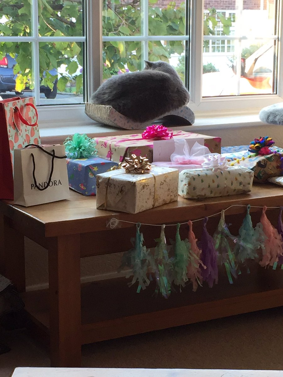 Official present #guardcat until sisfur wakes up to open presents 😎 mum loves this bow 🎀 https://t.co/Til0BN9mWI
