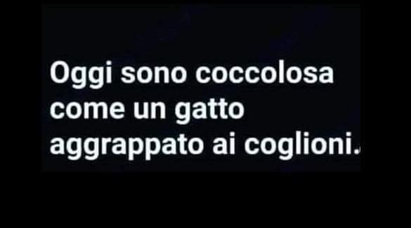 #12agosto
