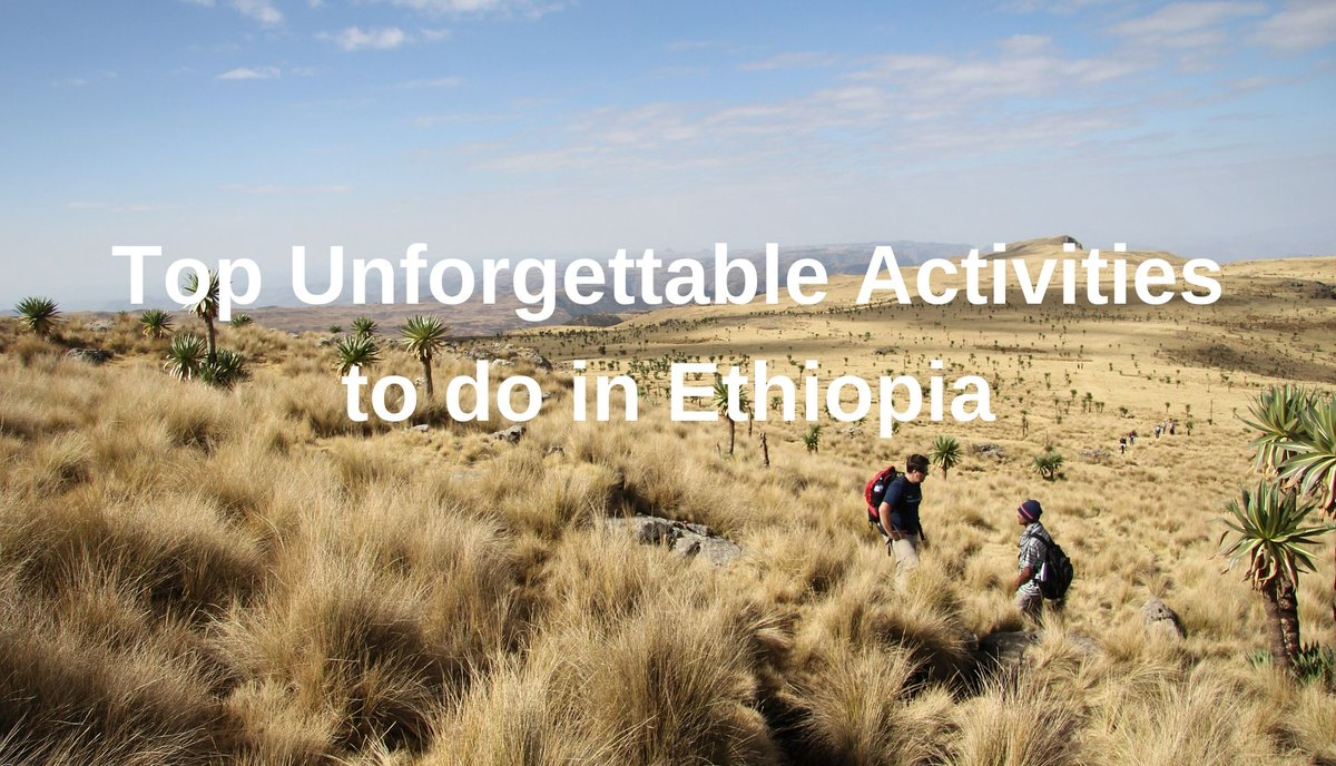**Armchair Travels** Is #Ethiopia on your bucket list? Check out our article before you go. #travel #totraveltoo #armchairtravels #beautifuldestination #travelwriter #livelovetravel #visitethiopia #travelmore #travelhappy #travelbecause #ilovetravel https://www.totraveltoo.com/top-unforgettable-activities-to-do-in-ethiopia/ …pic.twitter.com/jSPrZWZ9iA