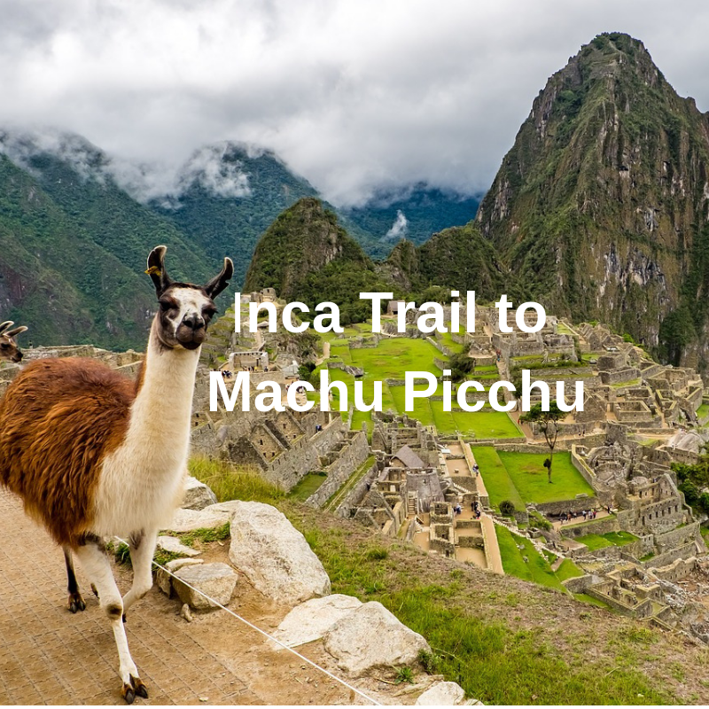 **Armchair travels** Certainly challenging but worth every step you take #travel #totraveltoo #machupicchu #armchairtravels #trekking #beautifuldestinations #travelwriter #getoutside #landscapes #awesomeearth #beautifulplanet #ilovetravel #livelovetravel https://www.totraveltoo.com/inca-trail-to-machu-picchu-peru-a-challenging-trek/ …pic.twitter.com/yNYASkoTEp