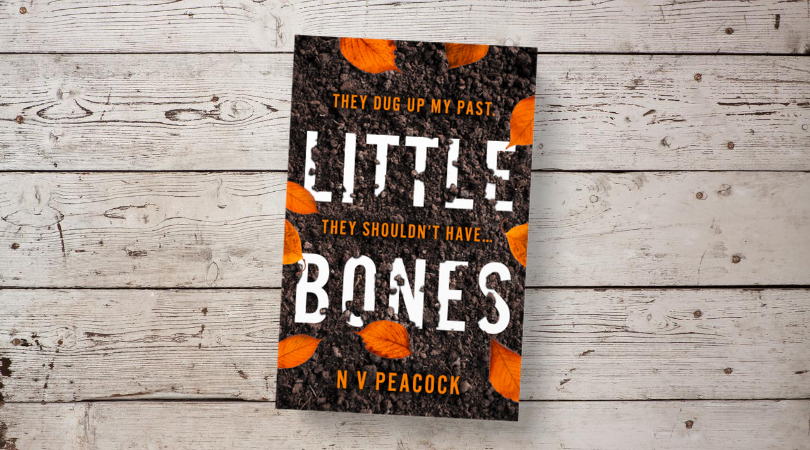 "HarperCollinsUK on Twitter: ""🍂 COVER REVEAL 🍂 I have three names: I was  born Leigh-Ann. I became Cherrie. When I was a child, they called me Little  Bones… Little Bones by N V"