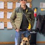 Image for the Tweet beginning: Three new #veteran and #servicedog