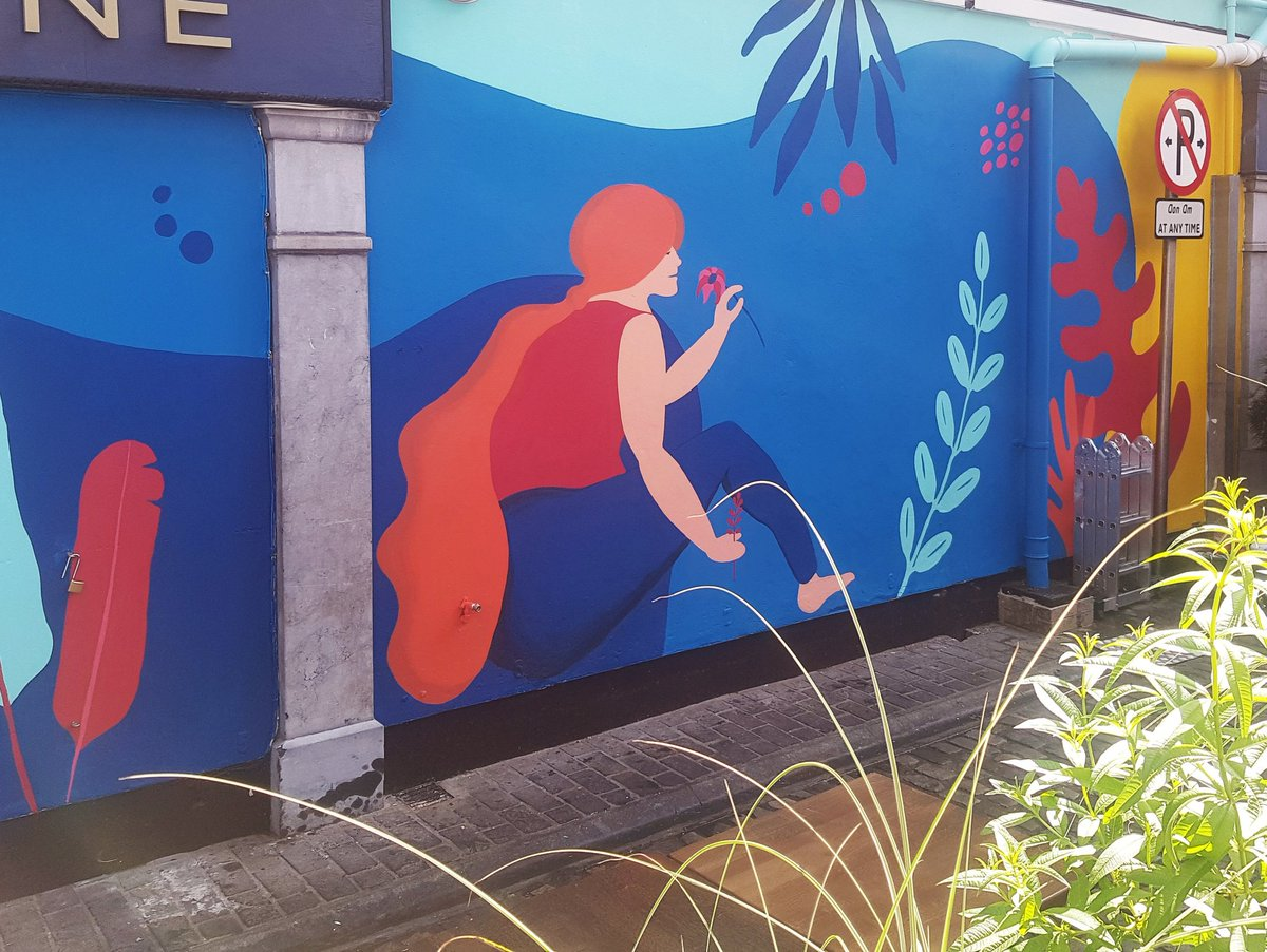 'Stop and smell the flowers'... Snapshot of a large new mural underway in town. #WorkInProgress #corkcity #purecork https://t.co/rmVvxtPtQa