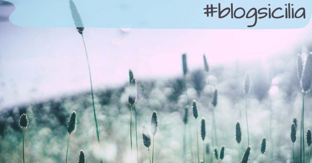 """""""La brezza del mattino ha segreti da dirti. Non tornare a dormire"""". Rumi  #blogsicilia! https://t.co/Kok4a1a90g"""