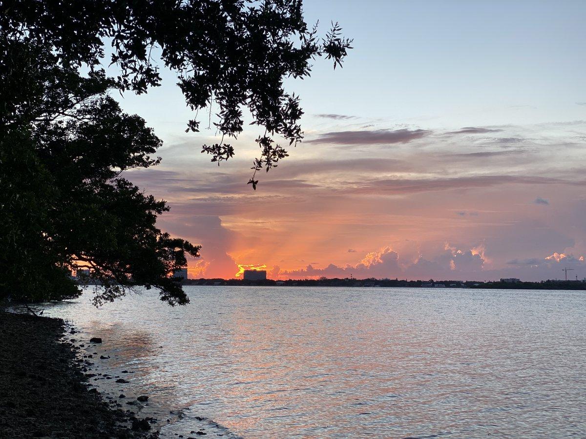 Took this sunset shot tonight off 195 in Miami...:) Goodnight peeps! #BidenHarrisLandslide