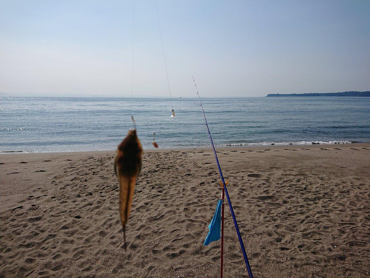 釣り 三浦 海岸