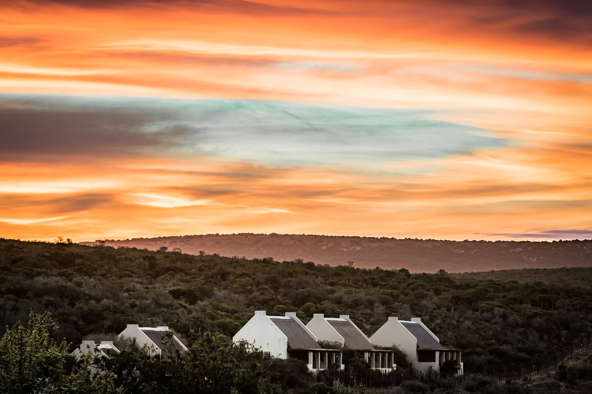 Welcome back to the wild! South African National Parks is offering 40% discount on new online bookings for accommodation at Addo Elephant National Park, valid until 31 August 2020 for intra-provincial travel only - T&Cs apply. Book now: https://t.co/Jn4jjqbHbO https://t.co/v4sOLHvuaz