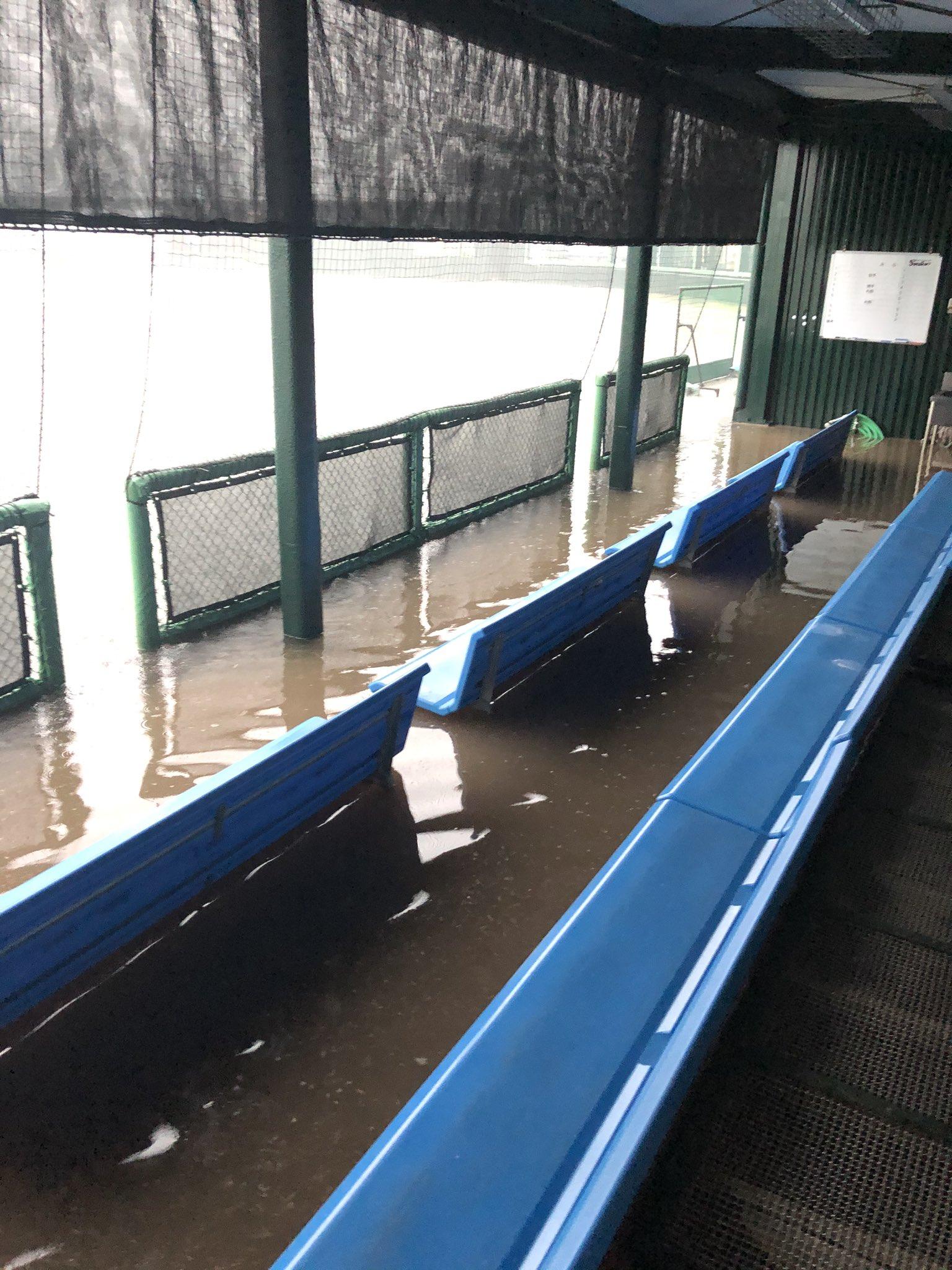 ヤクルト戸田球場が水没している画像