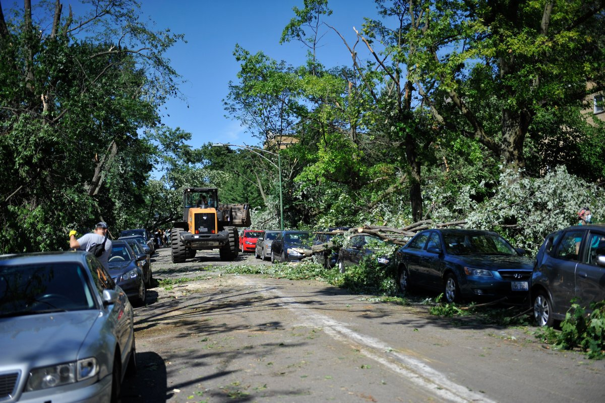 Over the past 24 hours, our Department of Streets & Sanitation has addressed nearly 1,000 tree emergency requests. That's a response every 86 seconds! If you have a service request, please submit it at https://t.co/c4yb6GpbN6 or by calling 311. https://t.co/iGbYKOuA2t