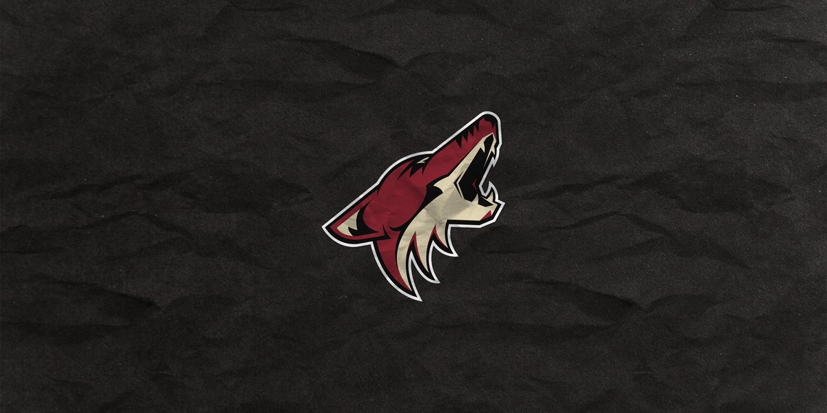 """🏒 ARIZONA COYOTES 🏒 """"They're unpredictable. That can be scary as an opposing team when you don't have much time to figure them out."""" 📝: playerstribu.ne/NHLPlayoffs @NHL 