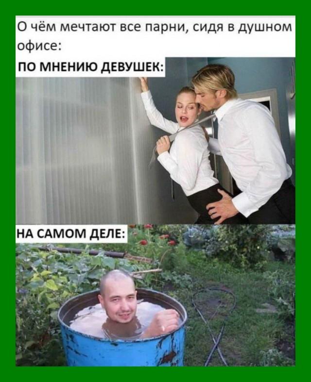 Юмор и шутки в картинках и фото