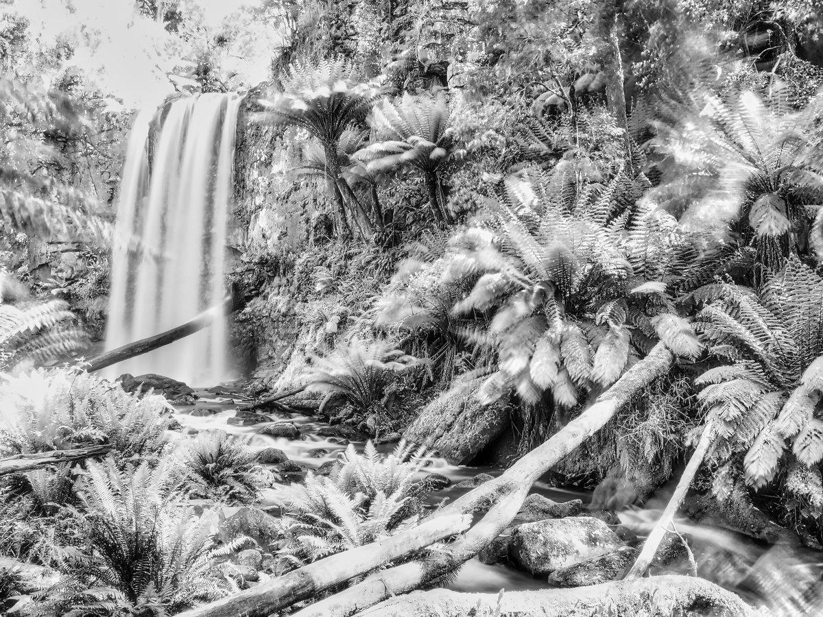#Hopetoun #waterfall is seen often in #lush #green and #shades from #Otway #Beechforest #Greatoceanroad   I love it #blackandwhite too  #Australia #ruralAustralia #landscape #scenery #nature #Australiamade   @Melbourne @greatoceanroad @ABCRural https://t.co/9rbd0sjzKn