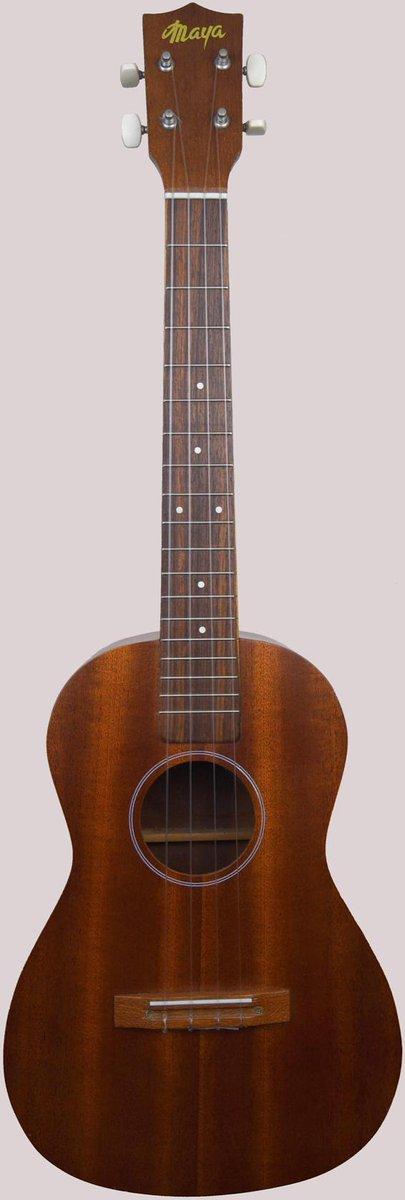 Maya Acoustic Baritone circa 1972