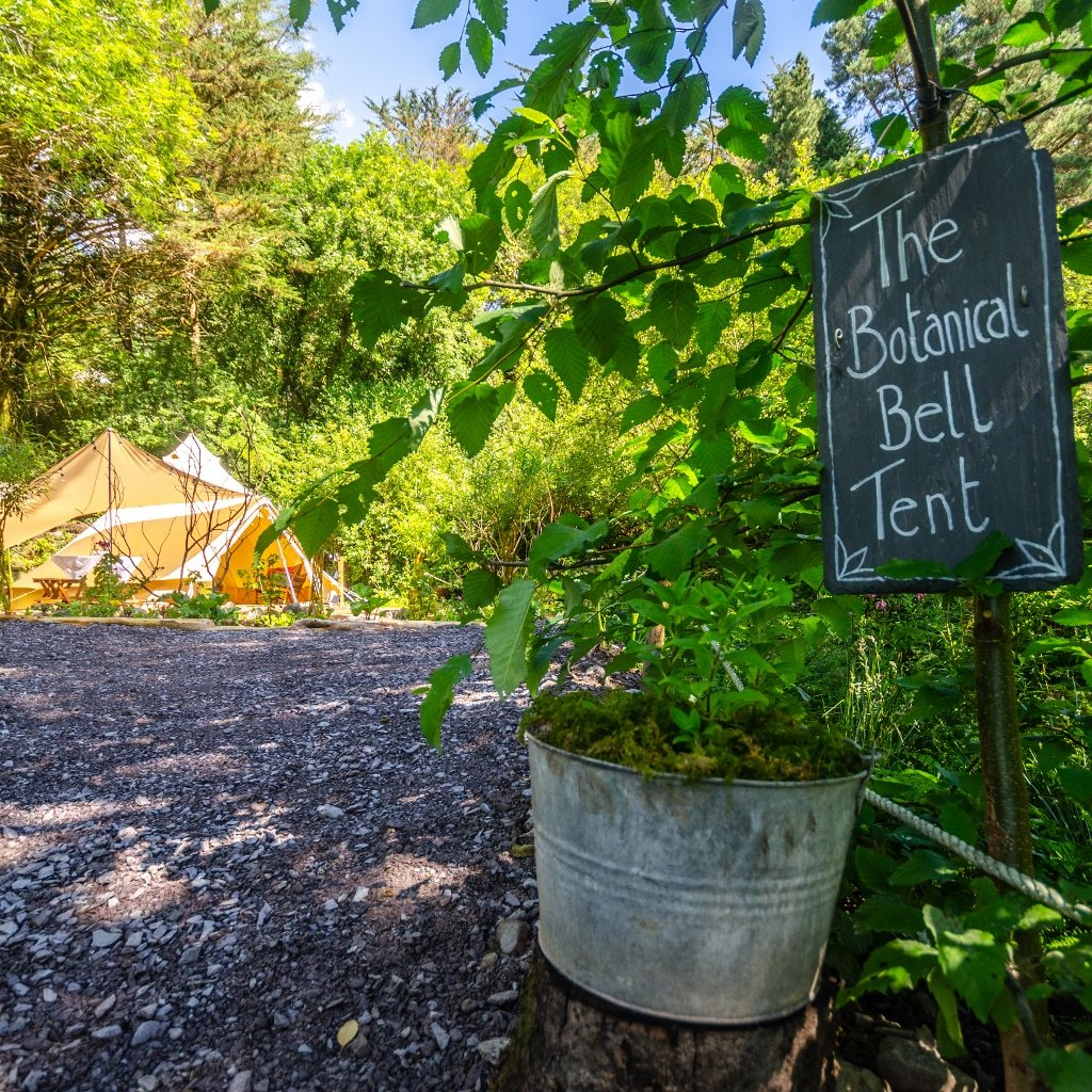 🌱🌱 LAST MINUTE BELL TENT AVAILABILITY 🌱🌱  Availability in the Botanical Bell Tent this weekend 16th - 18th!   https://t.co/M5mq7BFACu  #Escapewithus #TheBotanicalBellTent #PureCorkWelcomes #MakeABreakForIt #Boutique #Luxury #Staycation  #COVID19SafetyCharter #WildAtlanticWay https://t.co/2x6s3CzZDH