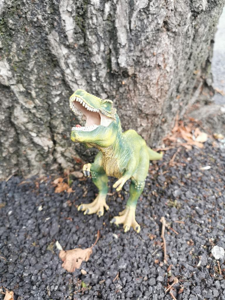 Someone dropped a rather excellent T Rex on Wellington Rd, Cork City . I moved to the side but then I thought someone else might snag it. So I picked it up. So if you've lost a T Rex I'm more than happy to return it. Please RT https://t.co/LjPPSsV14e