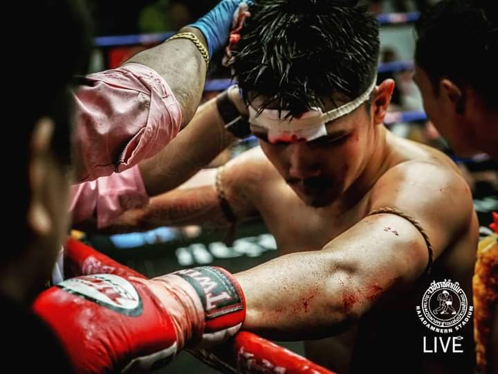 without pain, without sacrifice, we would have nothing.  https://t.co/Lhu9h9gx3S Your Muay Thai Guide  #muaythai #kickboxing #boxing #fullcontact #ufc #mma #martialarts #thaiboxing #workout #sports #muaypro #fighter #extremeshot #warrior #muaythaifighters #thaiboxer https://t.co/ja86kRoa78
