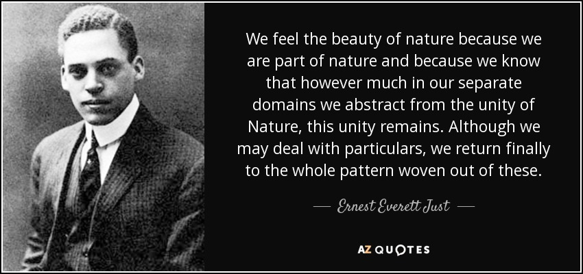 👨🏾🔬Scientist of the Week👨🏾🔬 Ernest Everett Just was born on Aug 14, 1883.⠀ ⠀ Ernest Everett Just was a biologist whose research led to... https://t.co/cSt39IAg6N  #ScientistOfTheWeek #ScienceBites #ScienceTwitter https://t.co/aldt9z7cAo
