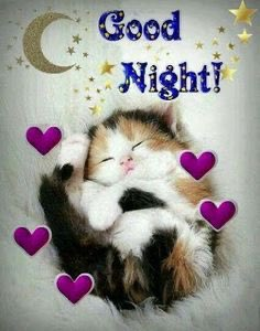 @Jilliemary @GaillardoJose @MelindaYoe @FRISEEMYRIAM @cdeka678 @leonalombaerts Goodnight dear Jillian ❤️Sweet Dreams ❤️