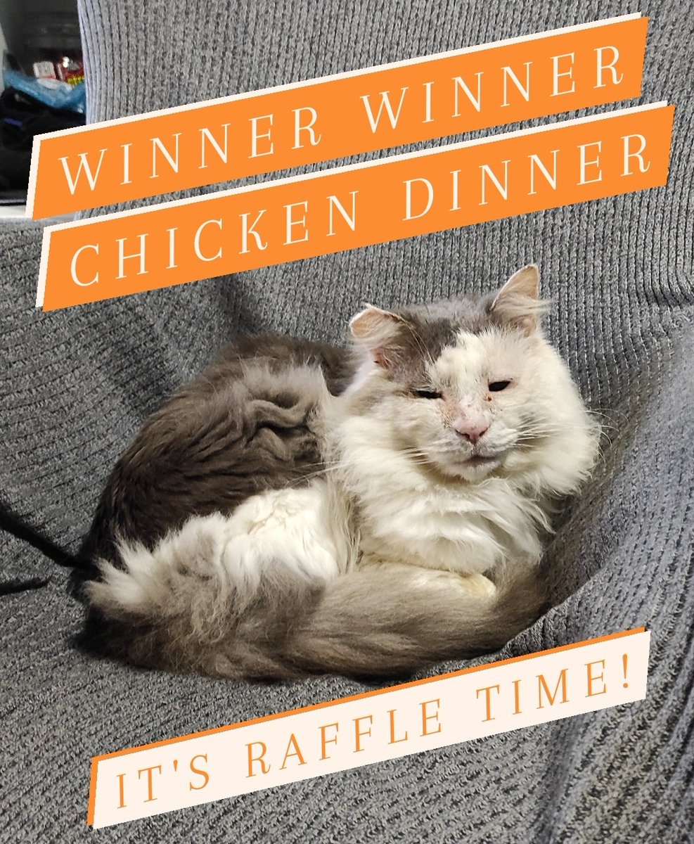 WINNER WINNER CHICKEMS DINNER!it Raffle time furriends! @jypseywheel an Scruff hosting fundraising raffle to help Gandalf's Legacy Cat Rescue @gandolf_s Dere be 4 amazing prize from two amazing Twitter artist to be winning! See below for more detail! #CatsOnTwitter #CatsOfTwitter https://t.co/JhUpKzI8KQ