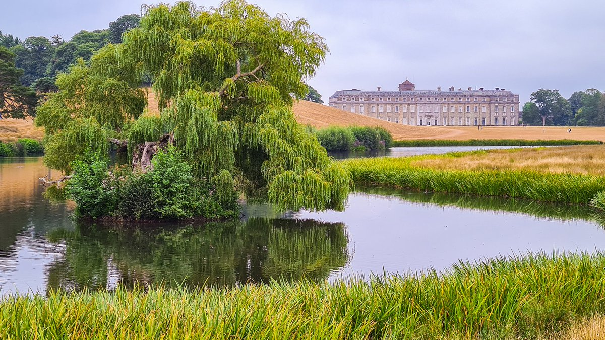 Very happy to be back exploring @nationaltrust properties today. Petworth House and Park are really quite lovely.