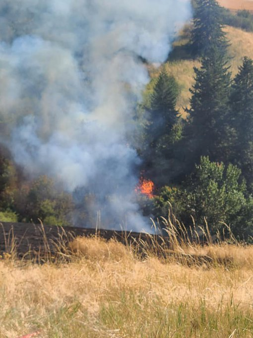 Lewis Peak Fire  Photos Courtesy of Walla Walla Fire District 8