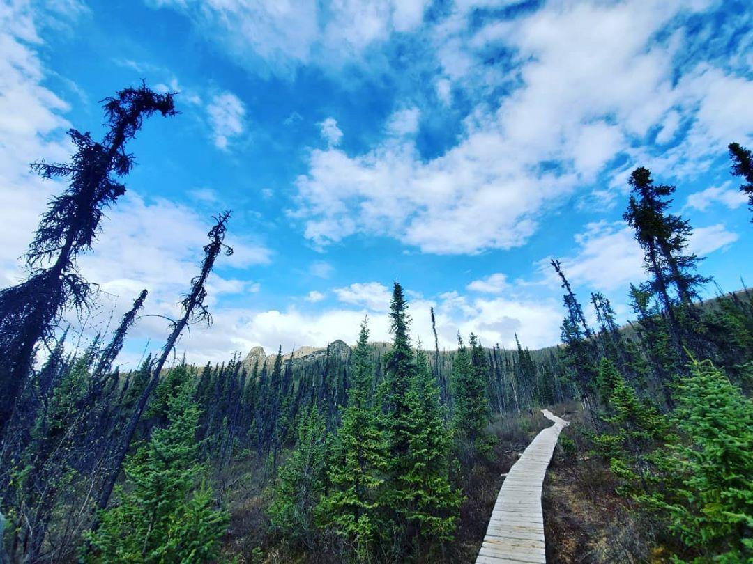 Sunday, Trail Day 🚶Put your boots on and hike Angel Rocks 🥾  Reposting @photography.klb  #photography #nikon #nikond3500 #photo #alaska #fairbanks #chenariver #chenahotsprings #hiking #mountains #pathway #followthepath #angelrocks https://t.co/bJZVkWdtNH