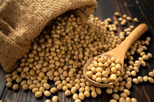 L'exportation du soja a généré 50 milliards FCFA au cours des 10 derniers mois https://t.co/4Rx06VE4Ik https://t.co/KT4aRUGaqf