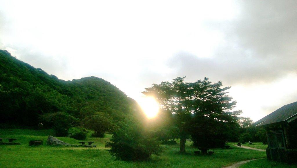SSeiji0429 photo