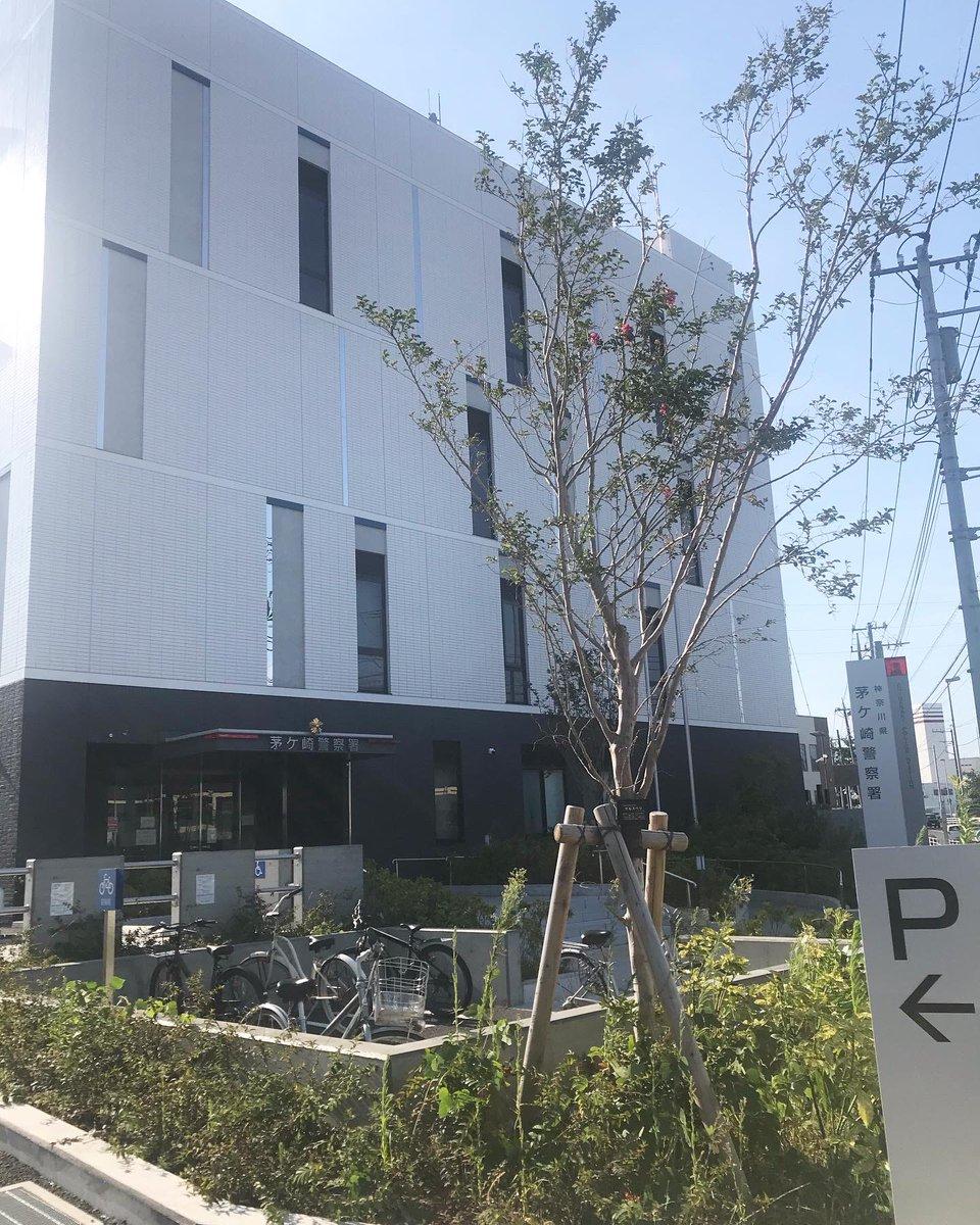 警察 更新 茅ヶ崎 署 免許