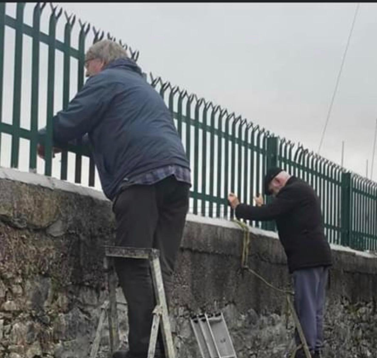 """Neil Prendeville on Twitter: """"80 YEAR OLD FORCED TO WATCH GAA MATCH UP ON A  LADDER -Cork man Eddie Twohig who is 80 years of age was forced to watch  his beloved"""