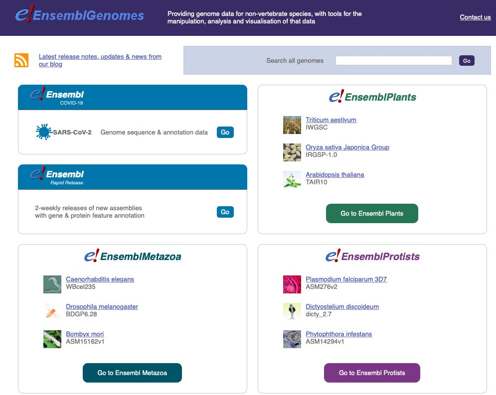 Check out our new #Ensembl Genomes homepage, with links to #plants🌱, #fungi🍄, #metazoa🕷️, #protists and #bacteria 🦠 as well as links to our #SARS_CoV_2 #Covid_19 and rapid release #genome browsers https://t.co/FWoMFcBzh3 https://t.co/t7pjweTaaJ