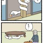 こんな妖怪なら飼ってみたい?猫+ろくろ首の組み合わせが可愛すぎる!