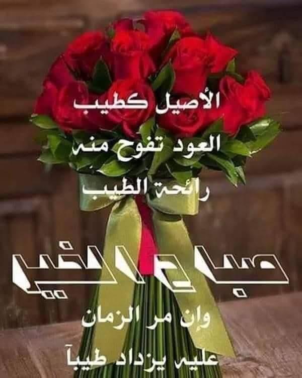 سناء نايف On Twitter الله يسلمك من كل شر