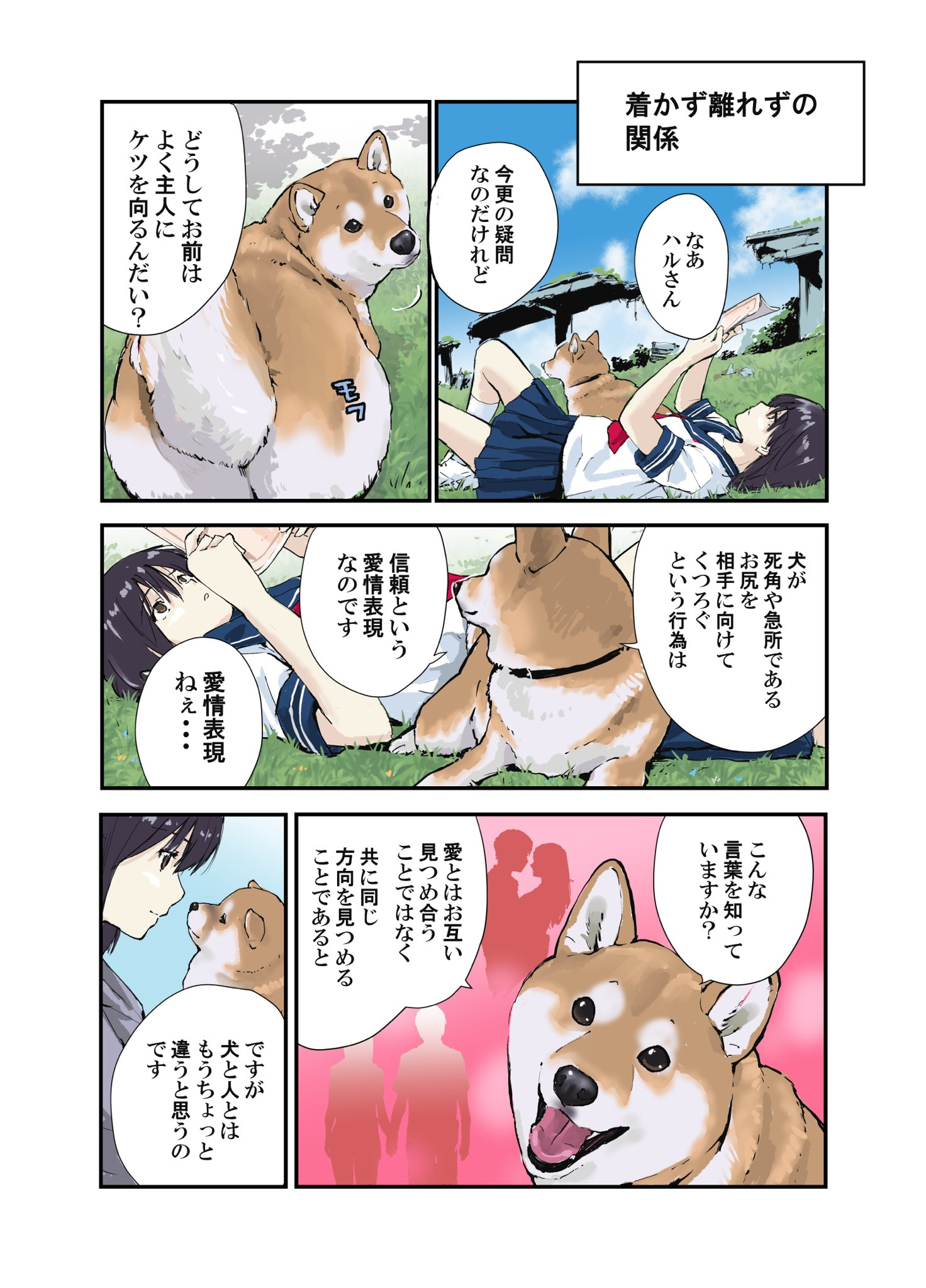 おしり 向ける 犬