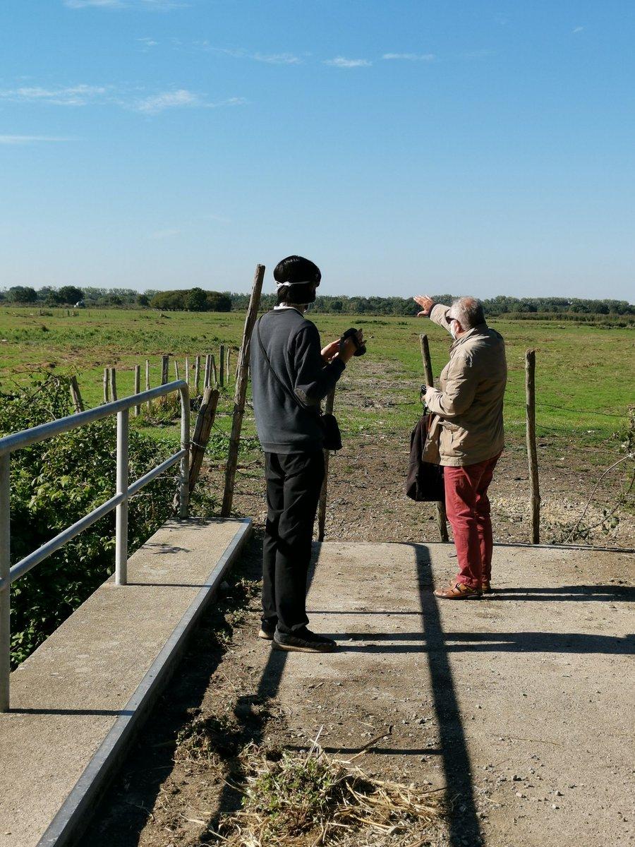 """#Coueron #Nature #Marais #Cigognes Balade matinale dans les marais de Couëron. Merci à M. Jean-Michel Pedrot, notre guide, et l'œil avisé de M. Florian Étienne, cinéaste, pour ce moment Nature. Le thème abordé """"les cigognes""""! https://t.co/WmltqPiNzY"""