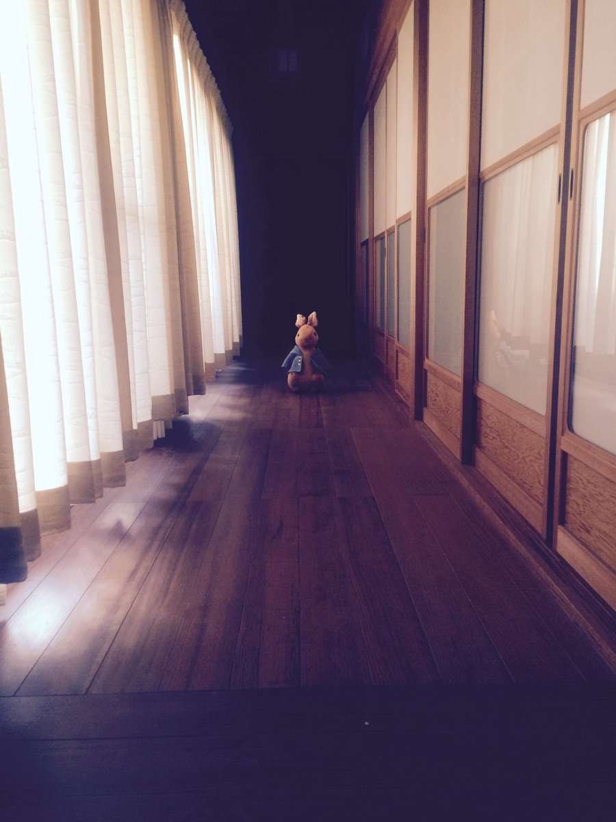 ホラー的な画像投下したいけどホラー苦手な人もいるだろうから『廊下にピーターラビットのぬいぐるみ置いただけ』の画像再掲しますね