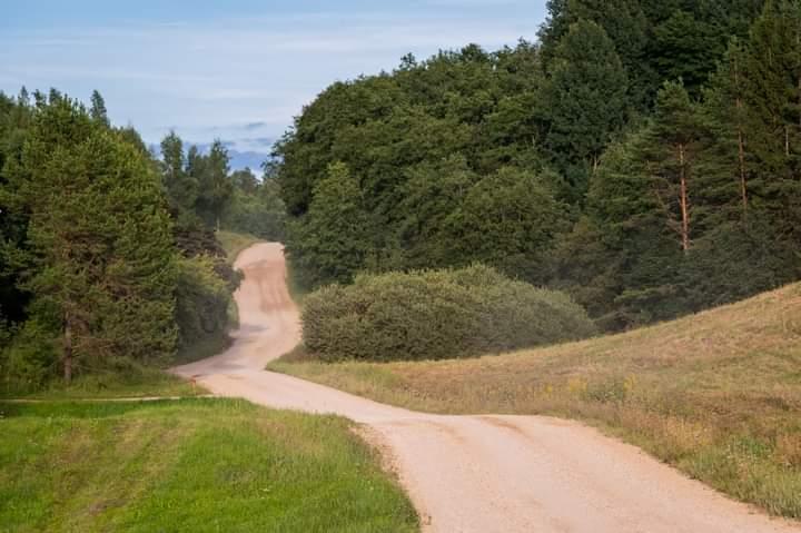 WRC: 10º Rallye Estonia [4-6 Septiembre] Eg6RoGMX0AYM_ex?format=jpg&name=900x900